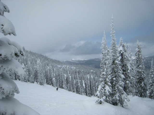 Whitefish at Big Mountain